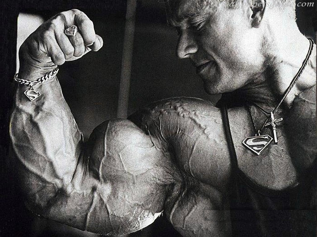 pics photos arnold bodybuilding picture wallpaper 38