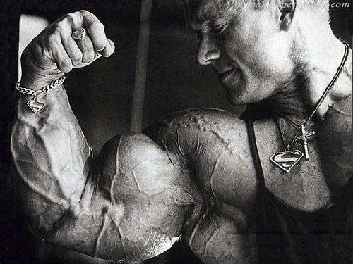 Arnold Schwarzenegger Обои