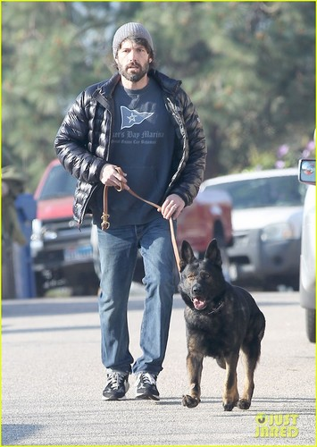 Ben Affleck: Morning Walk with the Dog