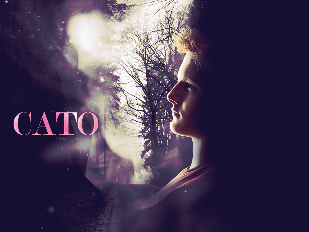 Alexander Ludwig images Alexander as Cato HD wallpaper and ...