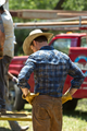 Dallas - Episode 1.01 - Pilot - New Promotional 写真