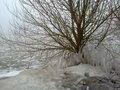 Enkhuizen Winter