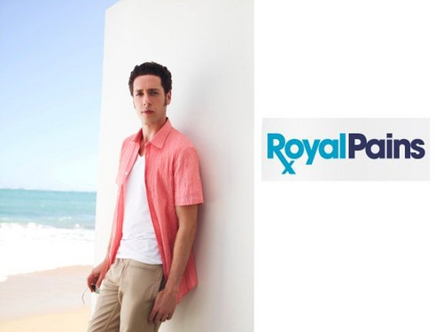 Royal Pains wallpaper probably with a portrait entitled Evan