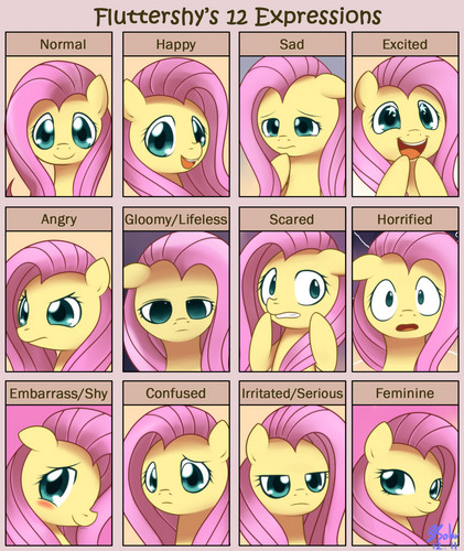 Fluttershy's 12 Expressions