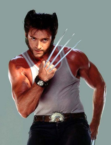 Hugh Jackman images Hugh Jackman  wallpaper and background photos