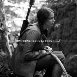 Hunger Games 粉丝 Art