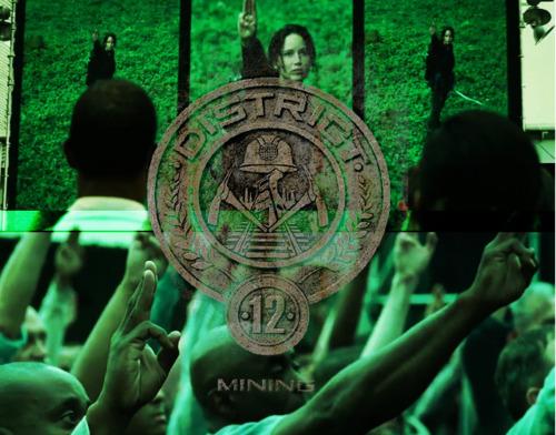 Hunger Games Fan Art