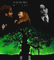 I'm not sorry there's nothing to say  - severus-snape-and-lily-evans fan art