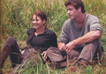 Katniss and Gale - the-hunger-games-movie photo