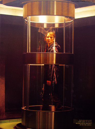 Katniss Everdeen wallpaper possibly with a revolving door titled Katniss