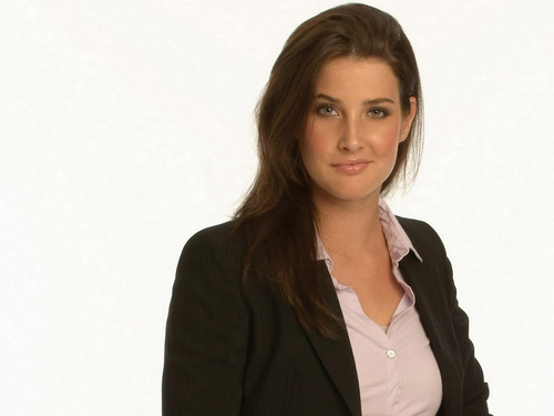 Robin Scherbatsky wallpaper containing a well dressed person and a portrait titled Robin Scherbatsky