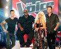 The Voice season 2 - the-voice photo