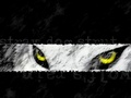 Wolf's Rain - Kiba eyes - wolfs-rain wallpaper