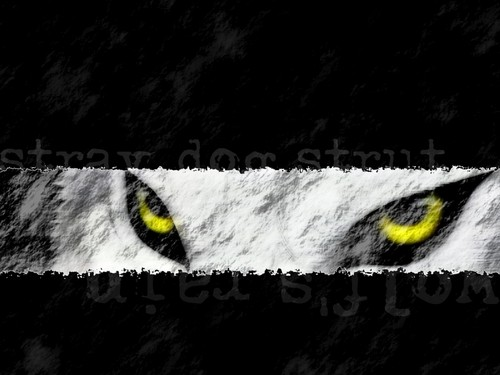 Wolf's Rain - Kiba eyes