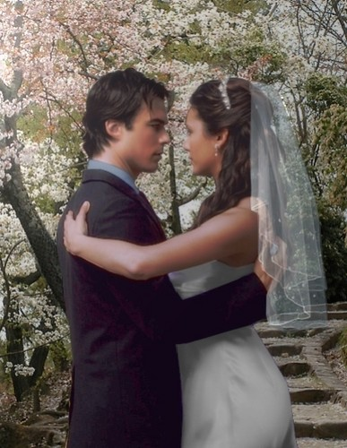 el diario de los vampiros fondo de pantalla containing a bridesmaid called elena&damon,wedding