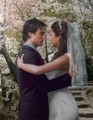 elena&damon,wedding