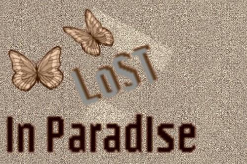 迷失 in paradise