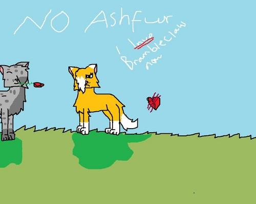 no ashfur