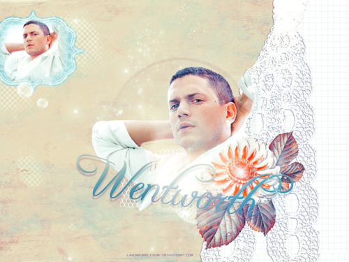 Wentworth Miller images wentworth miller HD wallpaper and background photos
