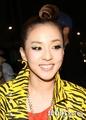 2ne1 member Dara's makeup