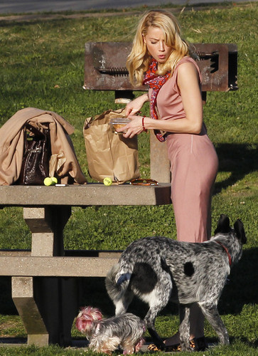 Amber Heard's Personal Picnic At The Dog Park