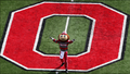 BRUTUS BUCKEYE AT MIDFIELD