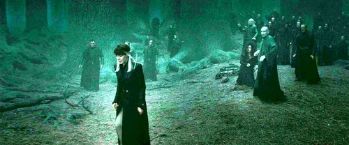 Bellatrix and Death Eaters