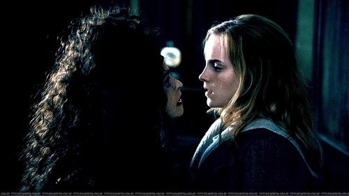 Bellatrix and Hermione - bellatrix-lestrange Photo