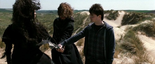 Bellatrix with Harry and Ron