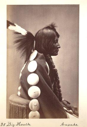 Big Mouth Hawk -1872