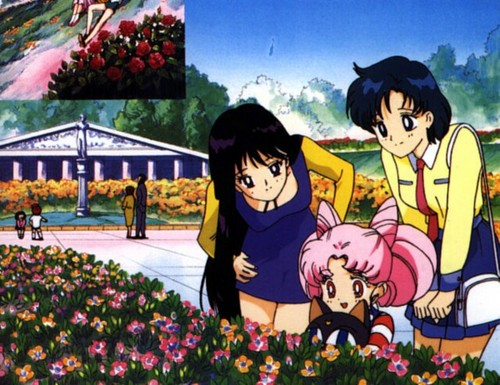 Chibiusa, Rei and Ami