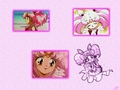 Chibiusa - sailor-mini-moon-rini wallpaper