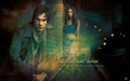 Delena &lt;333 - annalovechuck wallpaper