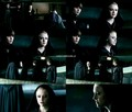 Eclipse - the-volturi photo