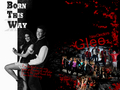 Glee - wallpaper - glee wallpaper