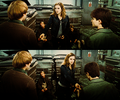 harry-potter - Harry, Hermione, and Ron screencap
