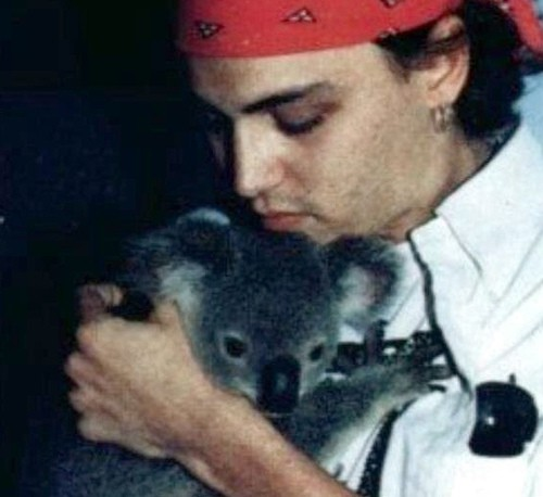 Johnny Depp & koala...so sweet♥