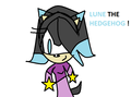 LUNE WITH STAR HANDS BECAUSE SHE IS A STAR! - lune-the-hedgehog photo