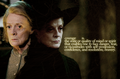 Professor Mcgonagall - professor-mcgonagall photo
