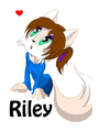 Riley the cáo, fox (me)