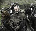 Davos Seaworth - game-of-thrones photo