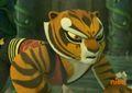 Tigress - tigress photo