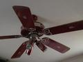 ceiling fan - dr-pepper photo