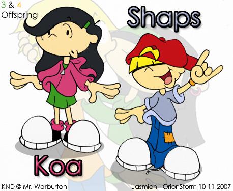 koala and shappo