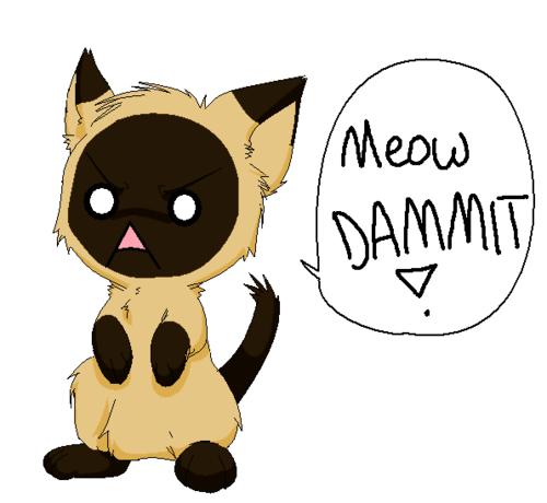 anime animal wallpaper called meow dammit!