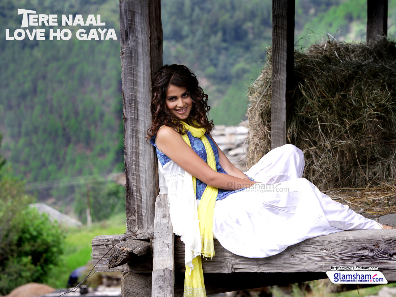 Genelia Dsouza Most Cutest One Images Tere Naal Love Ho Gaya HD Wallpaper And Background Photos