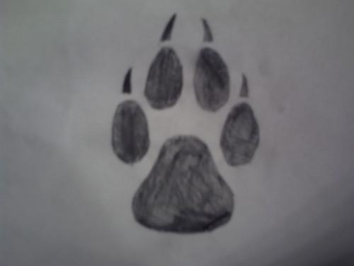 狼, オオカミ paw