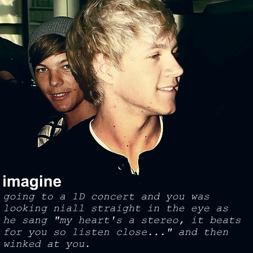 One Direction Imagines Niall Horan