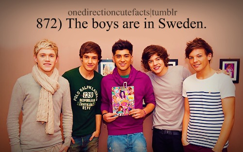 1D facts ♥