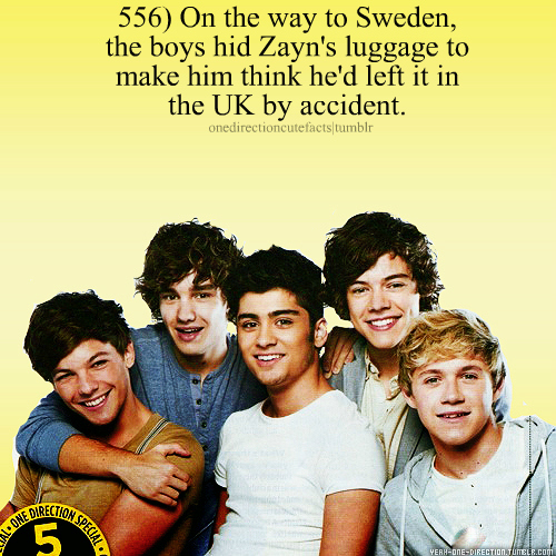 1D&#39;s facts <33